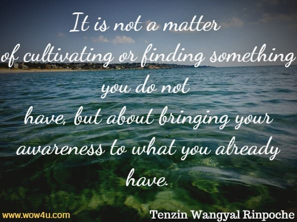 It is not a matter of cultivating or finding something you do not have, but about bringing your awareness to what you already have. Tenzin Wangyal Rinpoche
