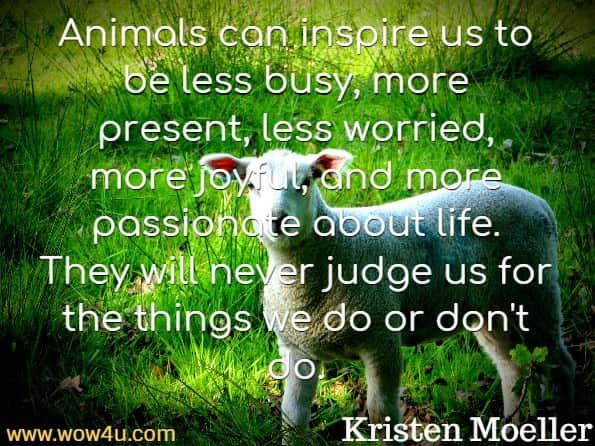 Animals can inspire us to be less busy, more present, less worried, more joyful, and more passionate about life. They will never judge us for the things we do or don't do. Kristen Moeller