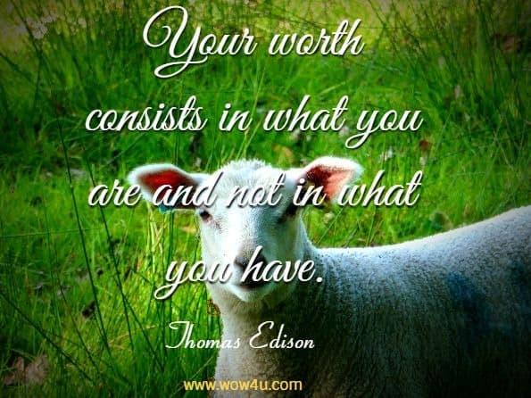 Your worth consists in what you are and not in what you have. Thomas Edison