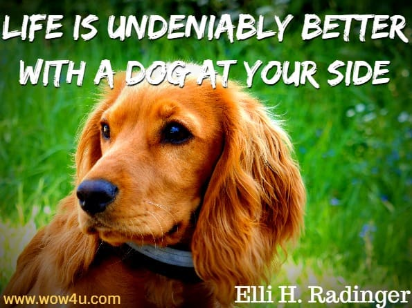 Life is undeniably better with a dog at your side. Elli H. Radinger, The Wisdom of Old Dogs