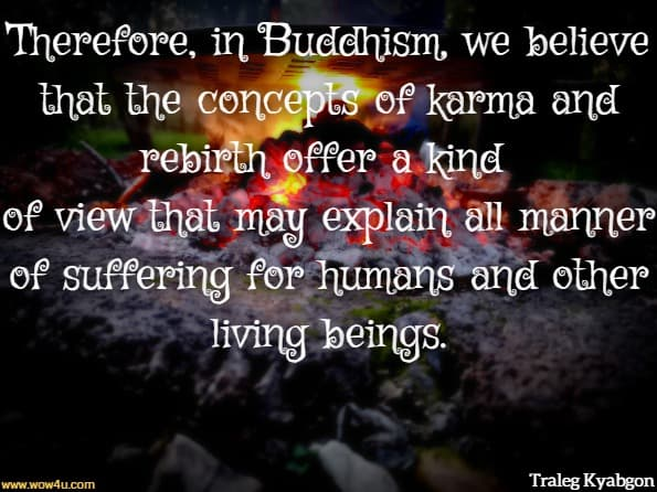 Therefore, in Buddhism, we believe that the concepts of karma and rebirth offer a kind of view that may explain all manner of suffering for humans and other living beings.