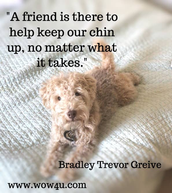 A friend is there to help keep our chin up, no matter what it takes.   Bradley Trevor Greive   Friends to the End: The True Value of Friendship