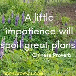 A little impatience will spoil great plans. Chinese Proverb