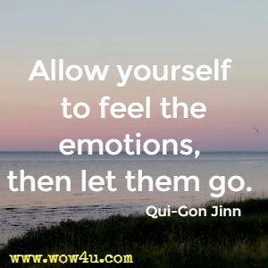 Allow yourself to feel the emotions, then let them go. Qui-Gon Jinn