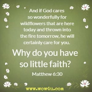 And if God cares so wonderfully for wildflowers that are here today and thrown into the fire tomorrow, he will certainly care for you. Why do you have so little faith?  Matthew 6:30