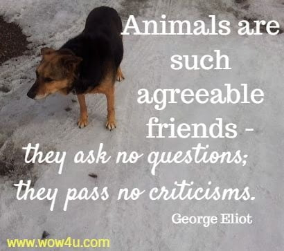 Animals are such agreeable friends - they ask no questions; they pass no criticisms. George Eliot
