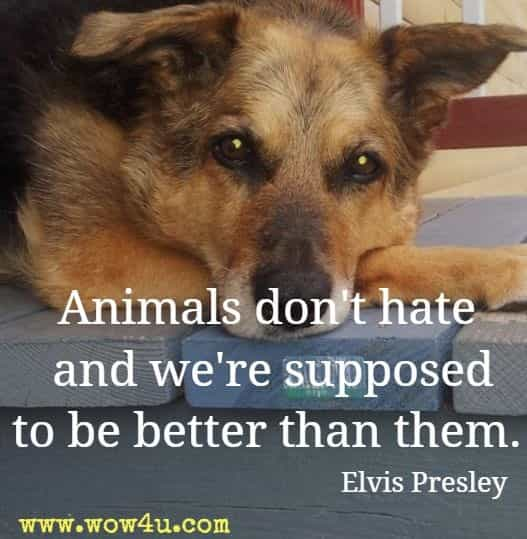 Animals don't hate and we're supposed to be better than them. Elvis Presley