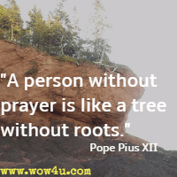 A person without prayer is like a tree without roots. Pope Pius XII