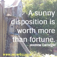 A sunny disposition is worth more than fortune. Andrew Carnegie
