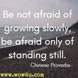 Be not afraid of growing slowly, be afraid only of standing still. Chinese Proverbs