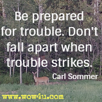 Be prepared for trouble. Don't fall apart when trouble strikes. Carl Sommer