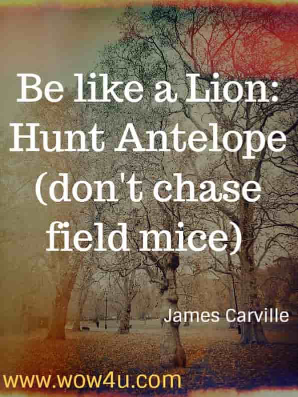 Be like a Lion - Hunt Antelope (don't chase field mice)  - James Carville and Paul Beguala.  Buck Up, Suck Up...and Come back when you Foul Up: 12 Winning Secrets from the War Room. Focus quotes