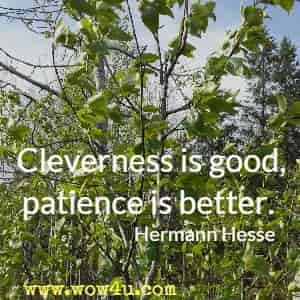 Cleverness is good, patience is better. Hermann Hesse