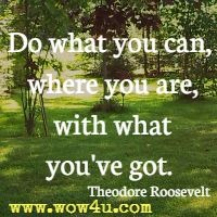 Do what you can, where you are, with what you've got. Theodore Roosevelt