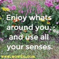 Enjoy whats around you, and use all your senses.