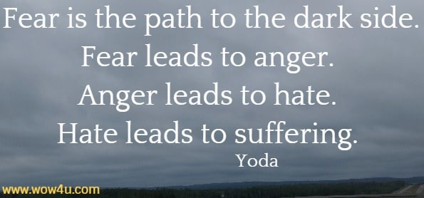 Fear is the path to the dark side. Fear leads to anger. Anger leads to hate. Hate leads to suffering.    Yoda