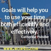 Goals will help you to use your time both efficiently and effectively.  Catherine Pulsifer