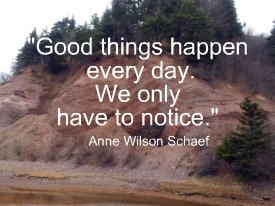 Good things happen every day. We only have to notice.  Anne Wilson Schaef