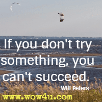 If you don't try something, you can't succeed.  Will Peters