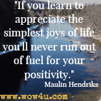 If you learn to appreciate the simplest joys of life you'll never run out of fuel for your positivity. Maulin Hendriks