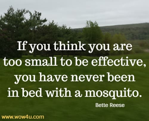 If you think you are too small to be effective,  you have never been in bed with a mosquito. Bette Reese