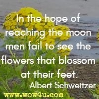 In the hope of reaching the moon men fail to see the flowers that blossom at their feet.  Albert Schweitzer