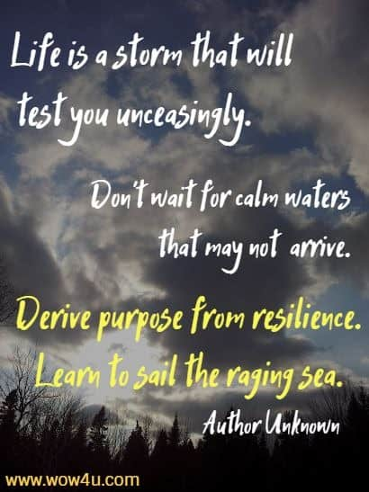 Life is a storm that will test you unceasingly. Don't wait for calm waters that may not arrive. Derive purpose from resilience. Learn to sail the raging sea.    Author Unknown