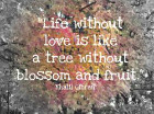 Life without love is like a tree without blossom and fruit. Kahlil Gibran