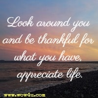 Look around you and be thankful for what you have, appreciate life.
