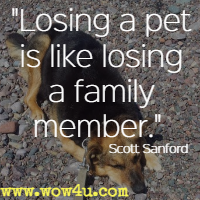 Losing a pet is like losing a family member. Scott Sanford