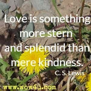 Love is something more stern and splendid than mere kindness. C. S. Lewis