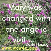 Mary was changed with one angelic visit .... David Herzog
