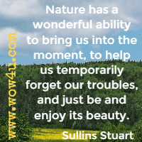 Nature has a wonderful ability to bring us into the moment, to help us temporarily forget our troubles, and just be and enjoy its beauty. Sullins Stuart