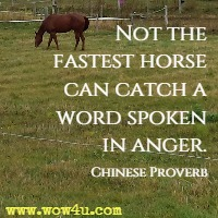 Not the fastest horse can catch a word spoken in anger. Chinese Proverb