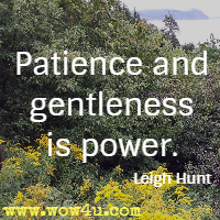 Patience and gentleness is power. Leigh Hunt