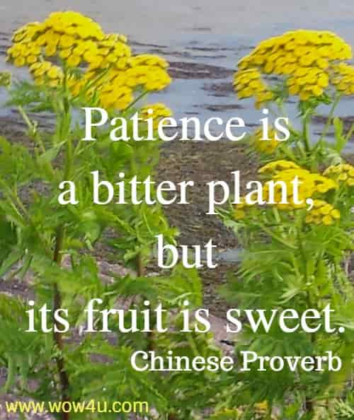 Patience is a bitter plant, but its fruit is sweet.   Chinese Proverb