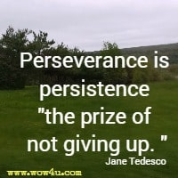 Perseverance is persistence the prize of not giving up. Jane Tedesco