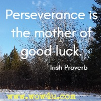Perseverance is the mother of good luck. Irish Proverb