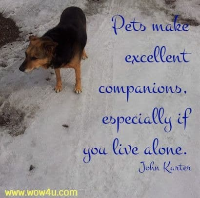 Pets make excellent companions, especially if you live alone. John Karter