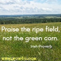 Praise the ripe field, not the green corn. Irish Proverb