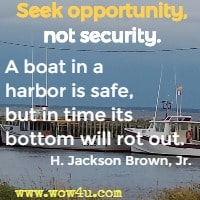 Seek opportunity, not security. A boat in a harbor is safe, but in time its bottom will rot out. H. Jackson Brown, Jr.