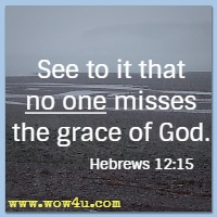 See to it that no one misses the grace of God. Hebrews 12:15 NIV
