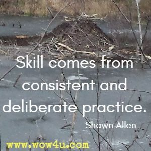 Skill comes from consistent and deliberate practice. Shawn Allen