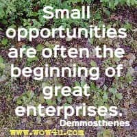 Small opportunities are often the beginning of great enterprises. Demmosthenes