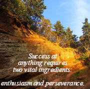 Success at anything requires two vital ingredients:   enthusiasm and perseverance. Norman Vincent Peale