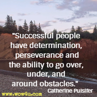 Successful people have determination, perseverance and the ability to go over, under, and around obstacles. Catherine Pulsifer