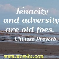 Tenacity and adversity are old foes.  Chinese Proverb