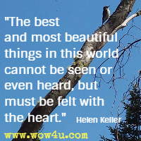 The best and most beautiful things in this world cannot be seen or even heard, but must be felt with the heart. Helen Keller