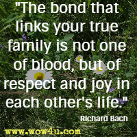 The bond that links your true family is not one of blood, but of respect and joy in each other's life. Richard Bach