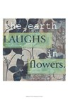 MORE Laughter Quotes